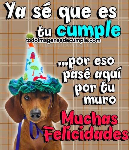 imagenes de cumpleaños con perrito y frase