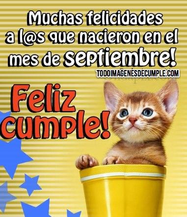 imagenes de cumpleaños con gatitos