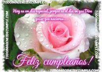 Imágenes de cumple con flor y frase: Hoy es un día especial, feliz cumpleaños!